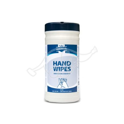 Hand wipes container
