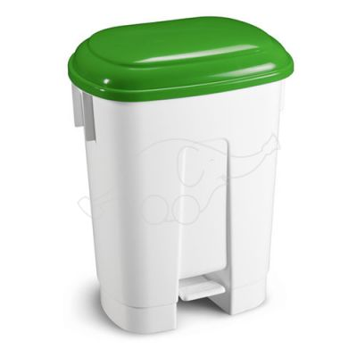 Bin Derby 60 L with pedal and green lid