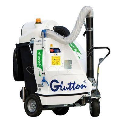 Electric Glutton  2411